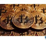 Multiply your Bitcoins hundredfold in a day