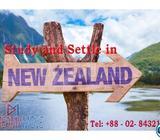  Higher Education In NewZealand
