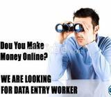 Data Entry/Survey Work