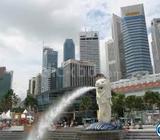 Singapore work visa at Hyundai Company