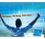 No invest, Do forex, Earn 100