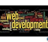 We are looking Expert Worpress Theme Developer & PHP Expert