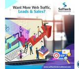 Search Engine Optimization Service- Softweb International