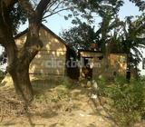 Ready Plot For very Urgent Sale In Keranigang Washpur in DCC