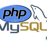 Professional PHP Programmer