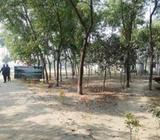 Very nice residential location for 3 katha land