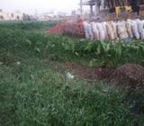 Land Sale @ Uttara (Near-12