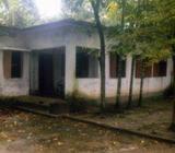 বাগান বাড়ী বিক্রà¦