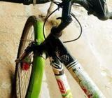 laux cycle