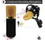 BM-700 Condenser Sound Recording Microphone and Plastic Shoc Brand New